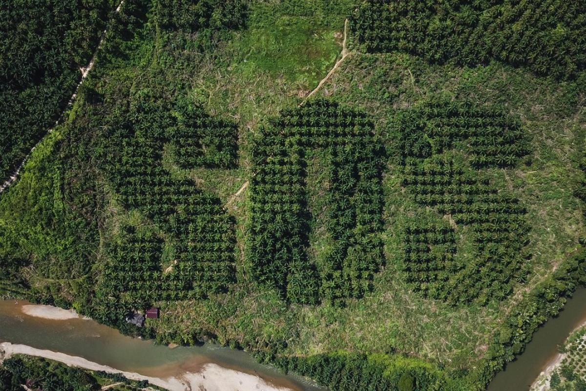 Các nguyên lý cơ bản về sử dụng tài nguyên thiên nhiên