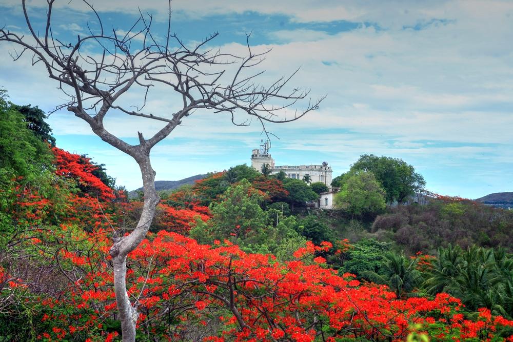 Chùm ảnh: 5 ngôi biệt thự hoành tráng của vua Bảo Đại ở Nha Trang