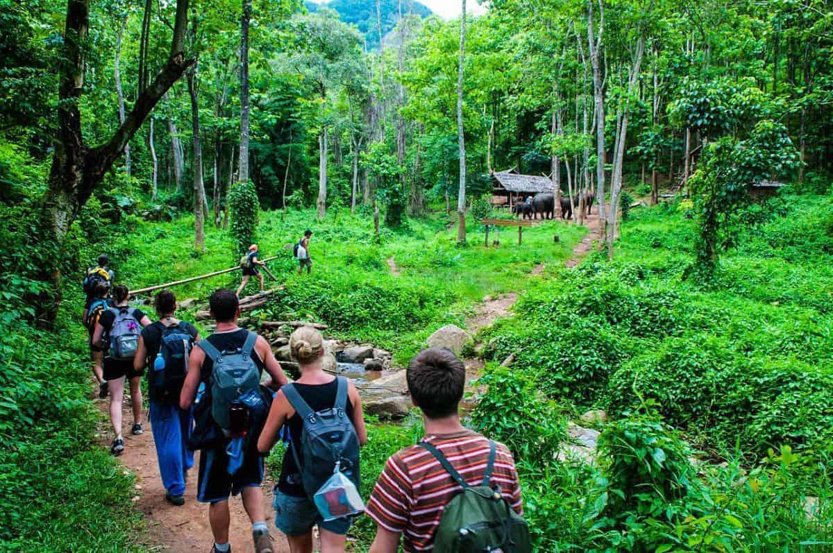 Vấn đề phát triển du lịch sinh thái ở Việt Nam hiện nay