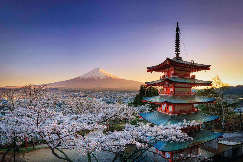 Nguồn gốc lịch sử tên gọi Phù Tang của đất nước Nhật Bản