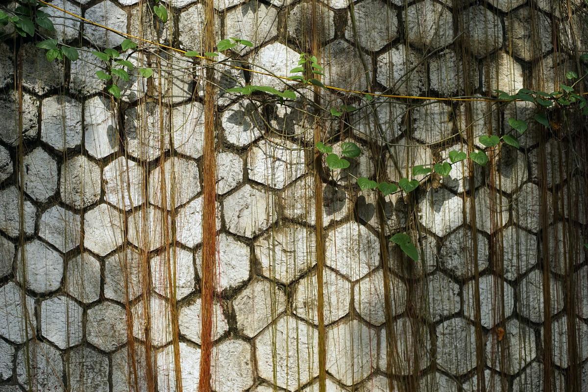 Chùm ảnh: Bức 'tường thành' trăm tuổi trên đường Phùng Hưng ở Hà Nội