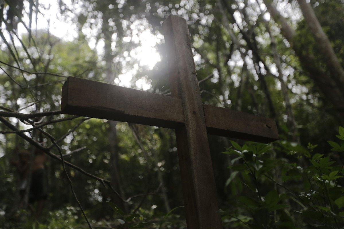 Tôn giáo học sinh thái -từ thế giới đến Việt Nam