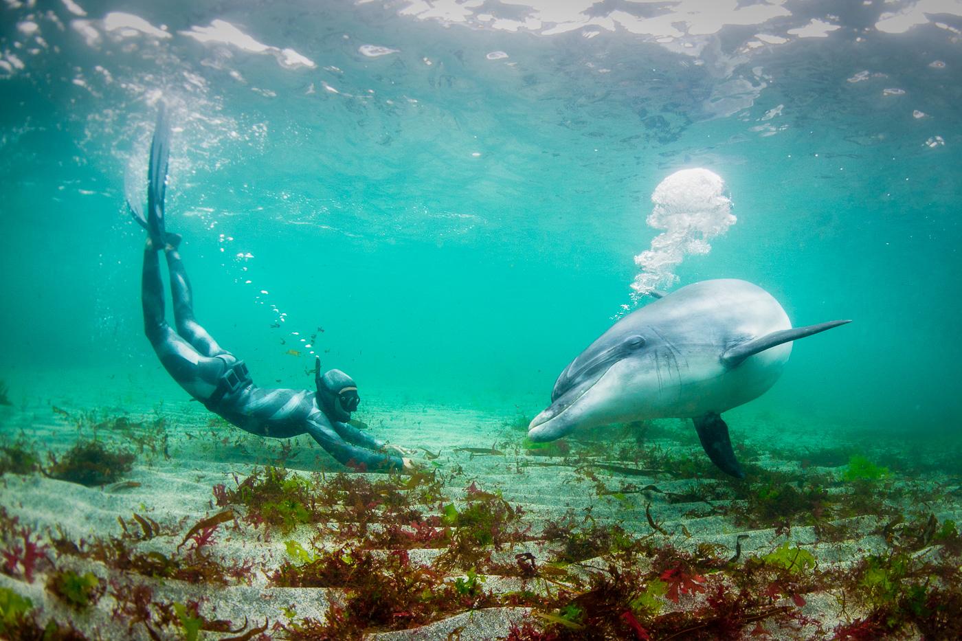 Bảo vệ môi trường biển từ góc nhìn sinh thái học nhân văn