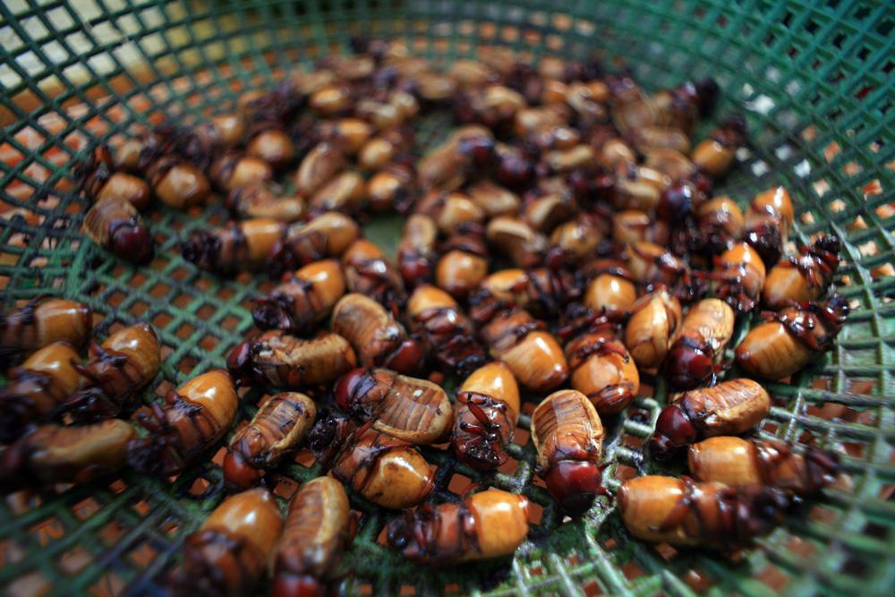 Chùm ảnh: Những mặt hàng kì dị ở chợ biên giới Tịnh Biên