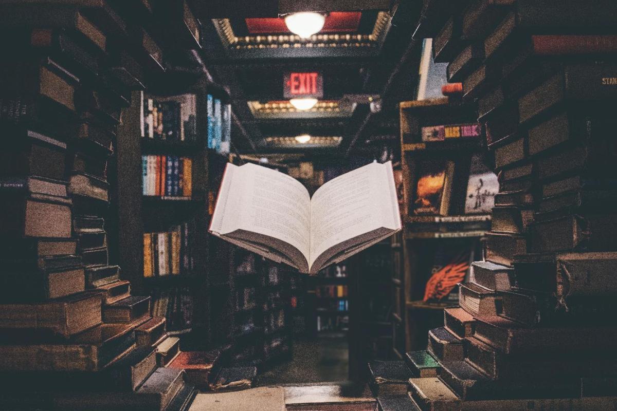 Vì sao văn học là vũ khí của kẻ yếu?