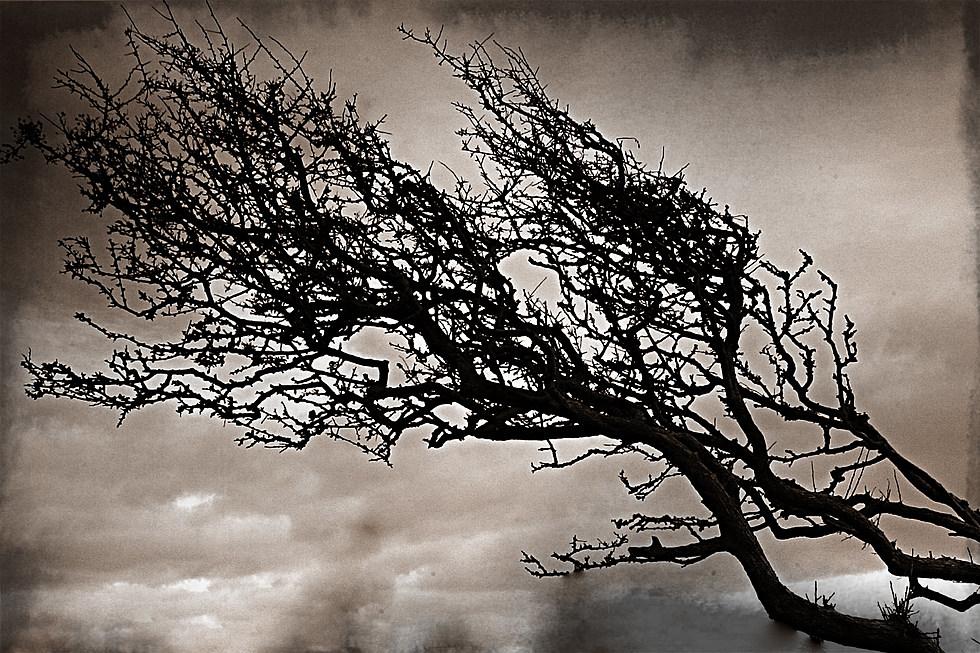 Triết lý nghệ thuật kỳ lạ của Edgar Allan Poe