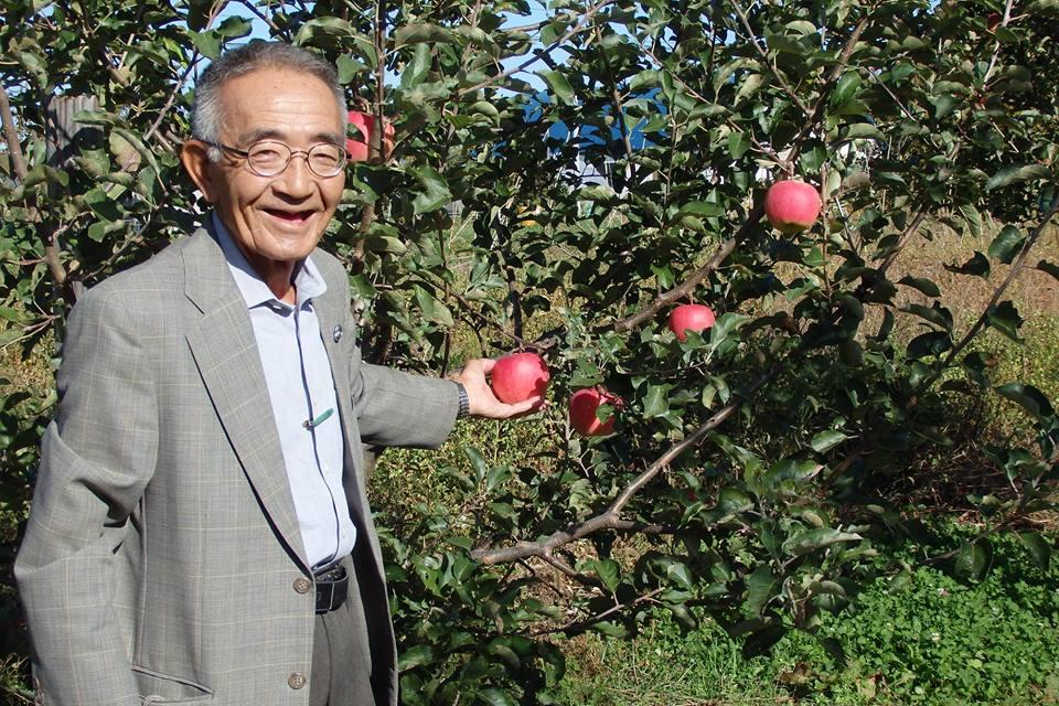 Quả táo 'thần kỳ' của Kimura và giấc mơ về một nền nông nghiệp 'thuận tự nhiên'