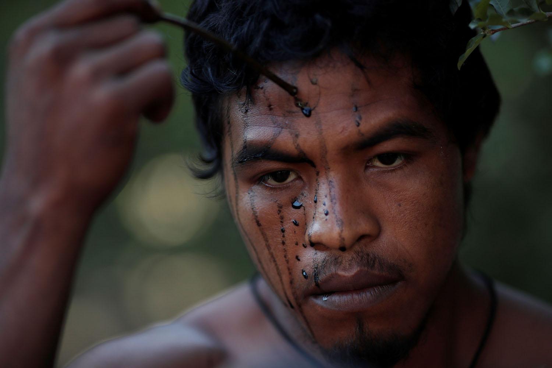 Chùm ảnh: 'Sói' Paulo – người bảo vệ Amazon vừa bị lâm tặc sát hại
