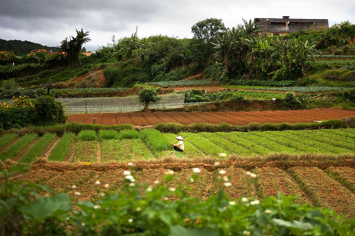 8 nguyên tắc của phát triển nông nghiệp bền vững