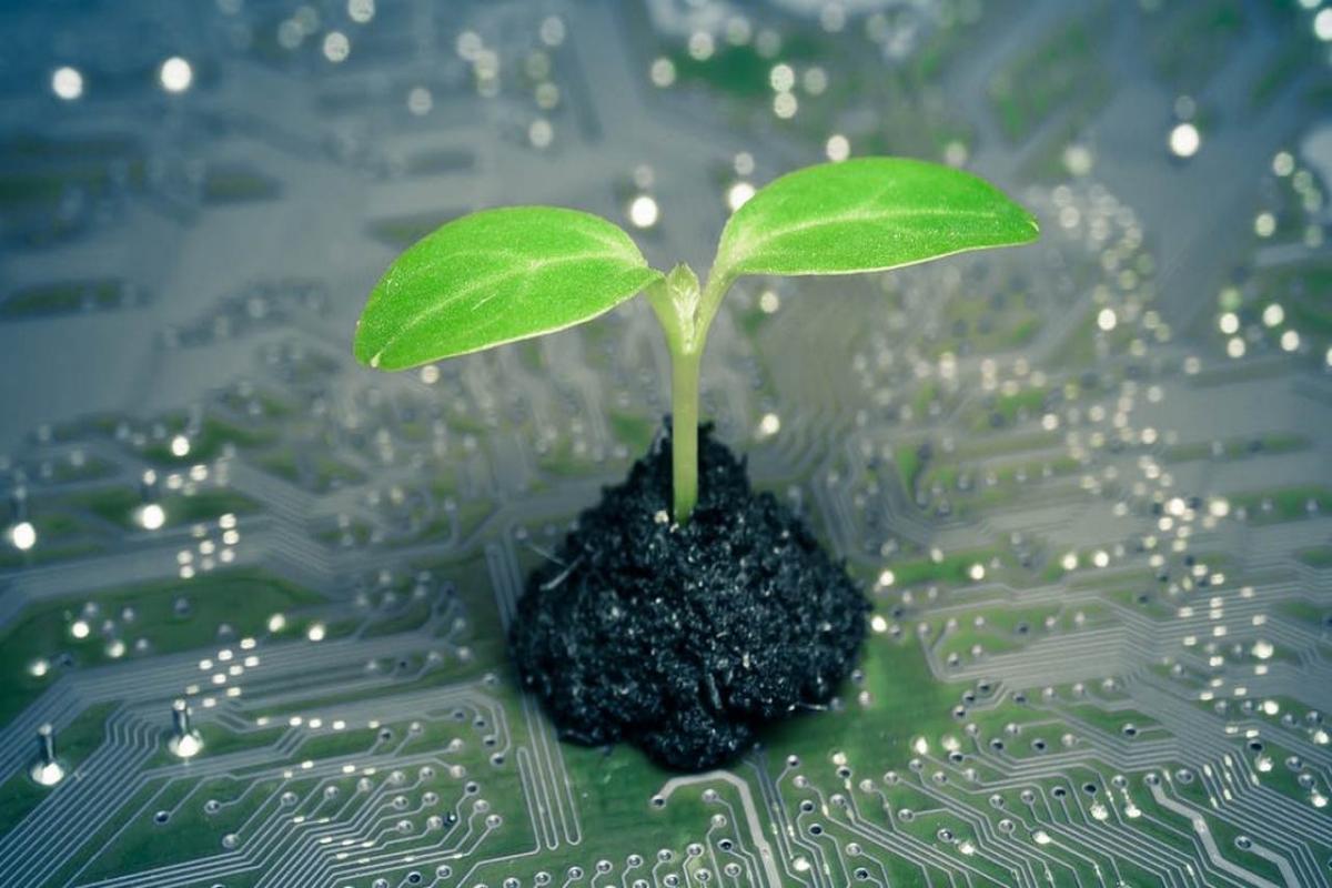 Làm thế nào để xây dựng một doanh nghiệp xanh?