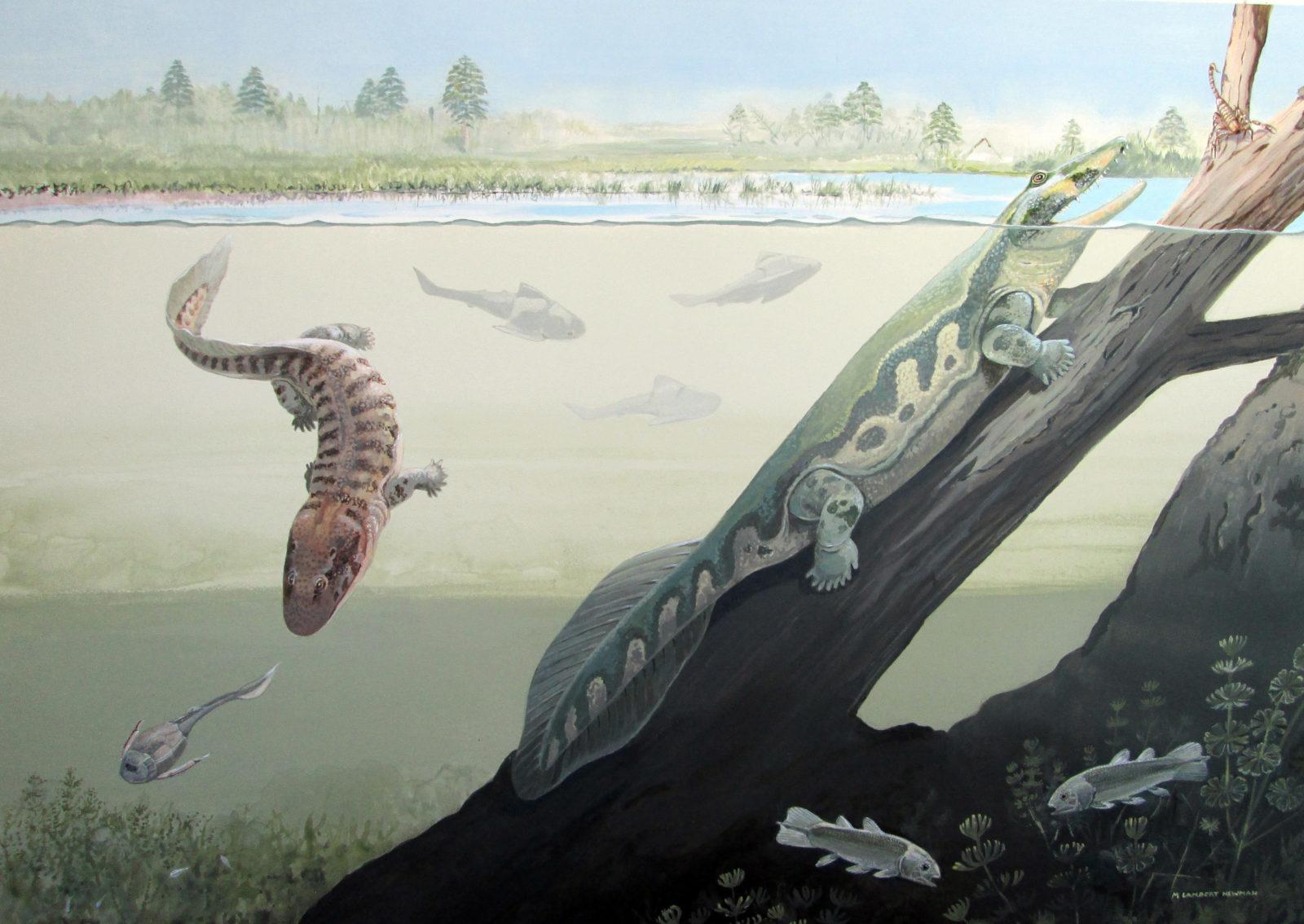 Lược sử tiến hóa của sự sống trên Trái Đất