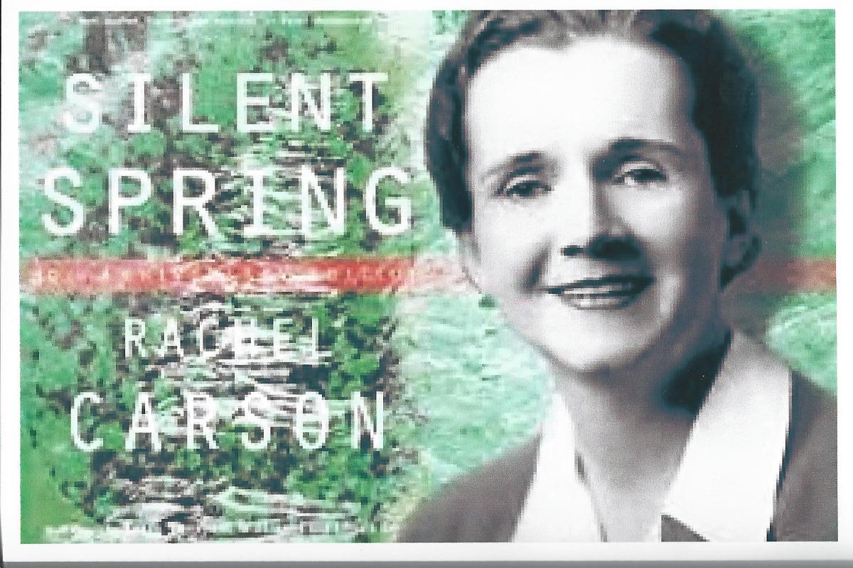 Rachel Carson và cuộc đời đấu tranh cho tiếng nói của tự nhiên