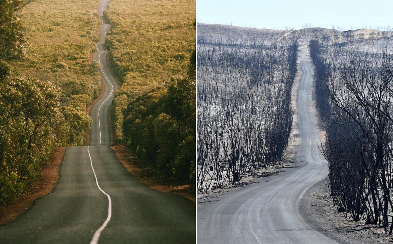 Chùm ảnh: Cảnh đối lập trước và sau thảm họa cháy rừng ở Australia