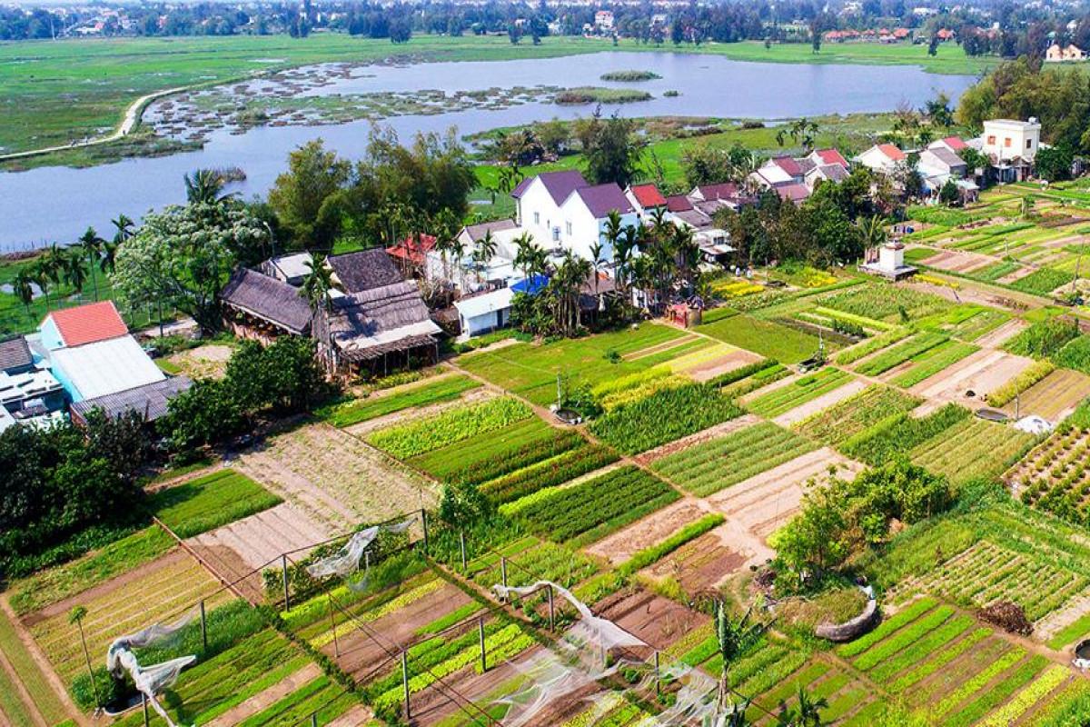 Thừa và thiếu – câu chuyện buồn về các miền quê Việt