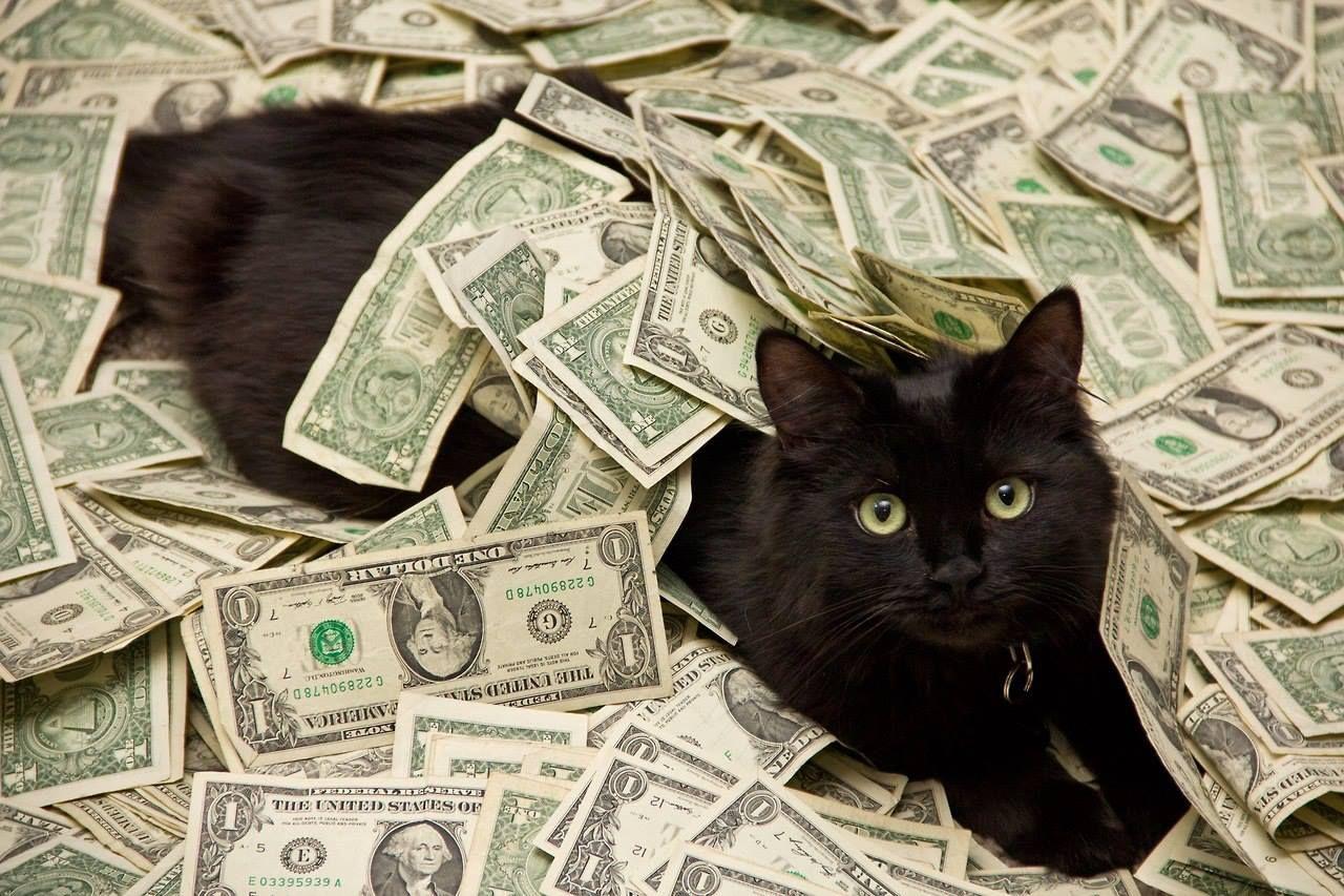 10 lý do khiến bạn buồn phiền vì nhiều tiền
