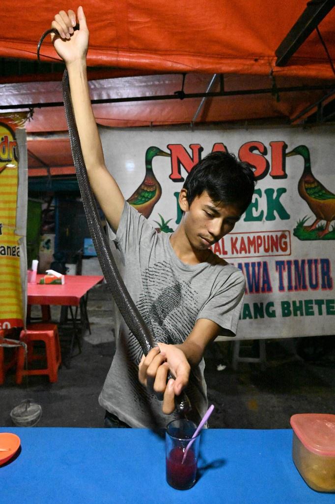Thit doi, ran khong lo ban la liet trong cho noi tieng Indonesia hinh anh 4 Indonesia_12.jpg
