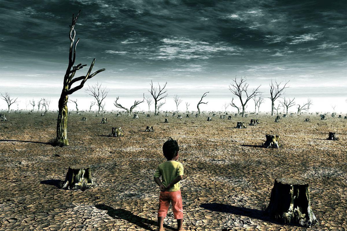 Trách nhiệm của con người với tình trạng biến đổi khí hậu