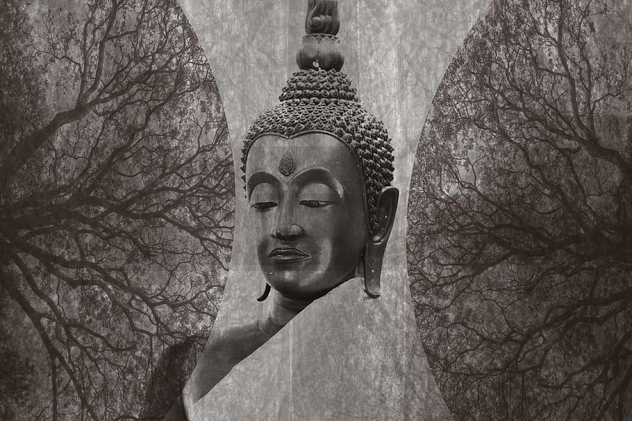Phật học và Huyền học luận về vô tri
