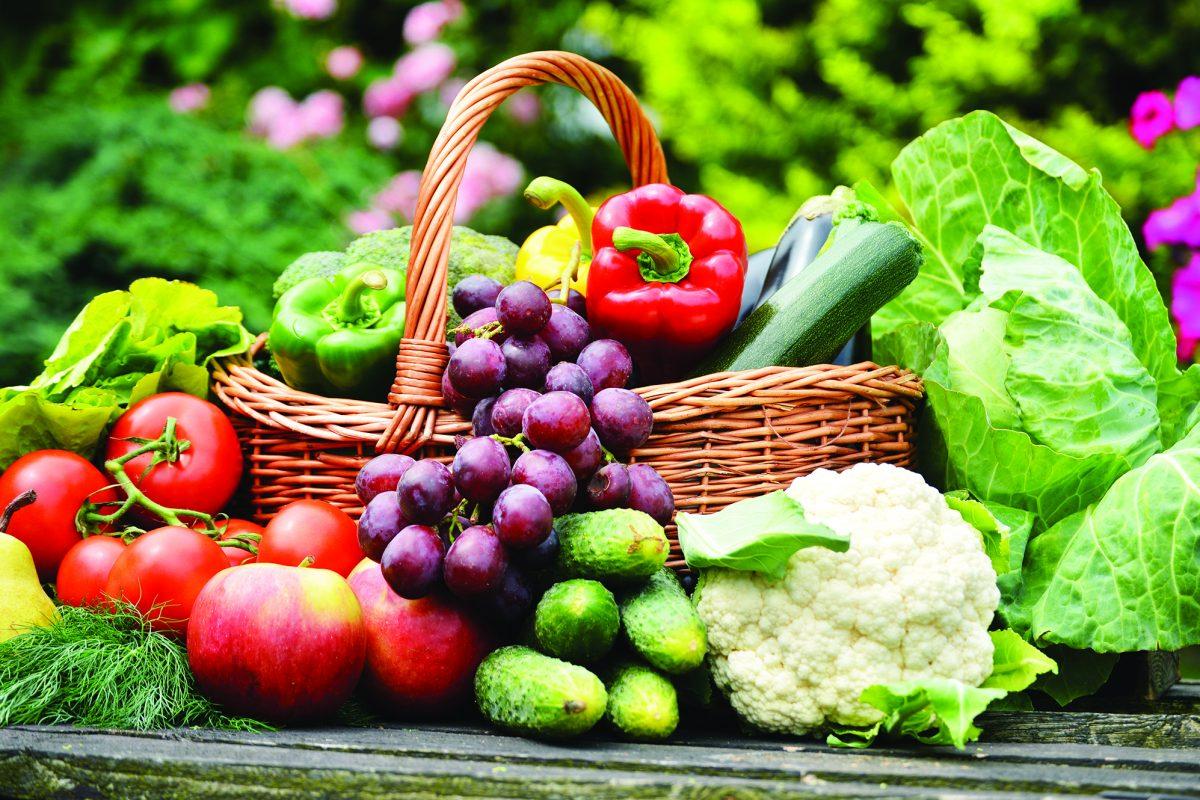 Những thực phẩm nâng cao sức đề kháng của con người