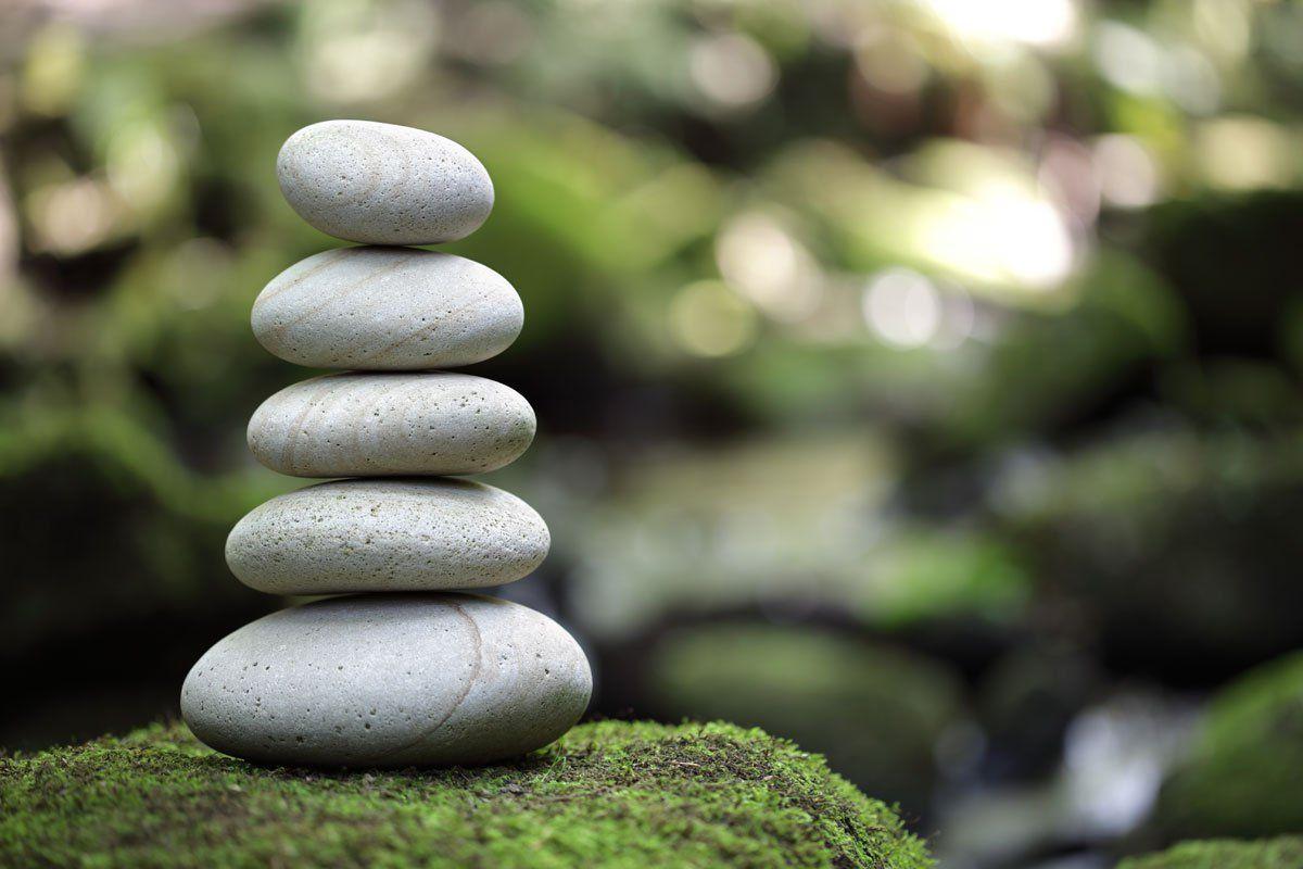 Về quan điểm vô vi của Lão Tử và vô vi của đạo Phật