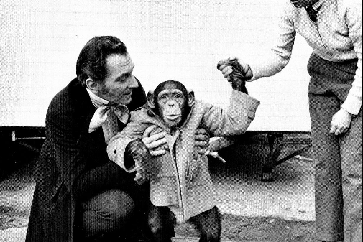 Câu chuyện buồn về một con tinh tinh vẫn tưởng mình là người
