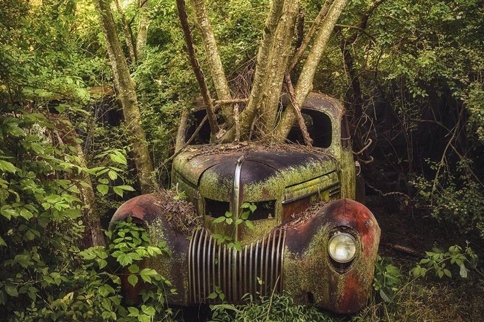 Chùm ảnh: Vẻ đẹp ma quái của những chiếc xe hơi bị lãng quên