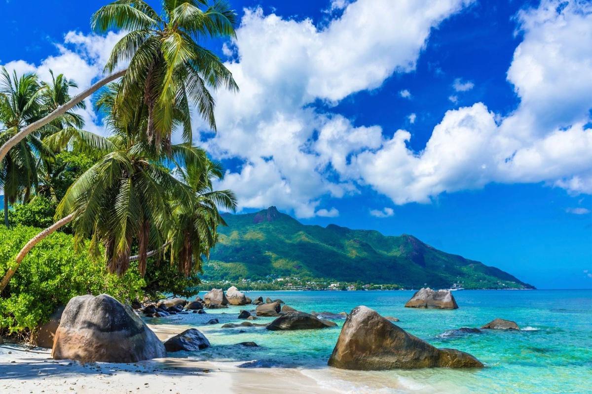 Chùm ảnh: Những miền nhiệt đới xanh tươi trên khắp hành tinh