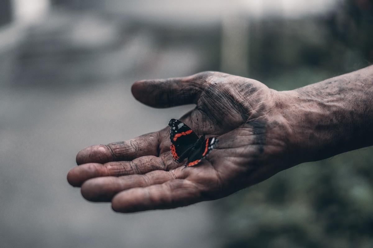 Các lý thuyết về mối quan hệ giữa con người và môi trường