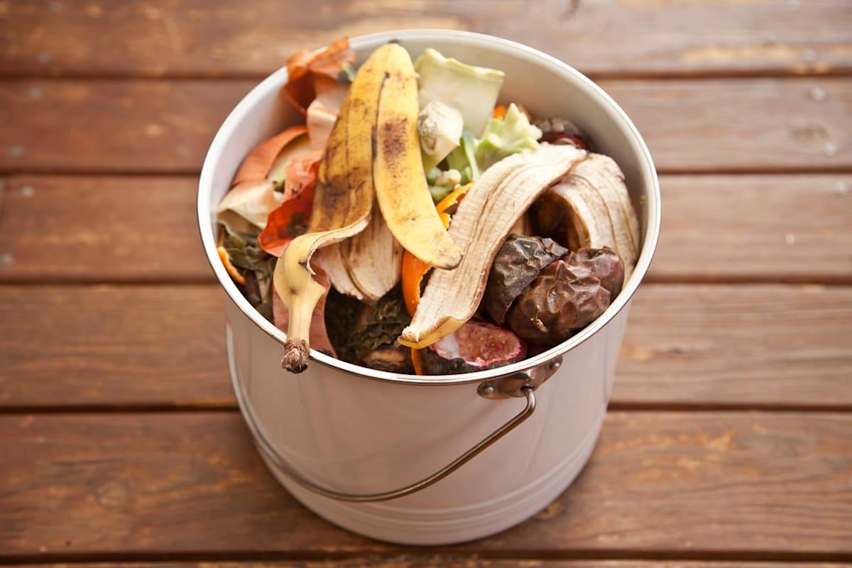 Tìm cuộc sống thứ hai cho rác thải sinh học