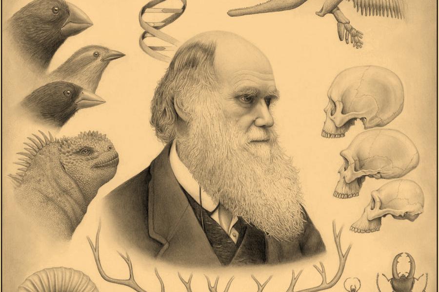 Stephen Hawking nói về Darwin và tầm vóc vĩ đại của 'Nguồn gốc các loài'