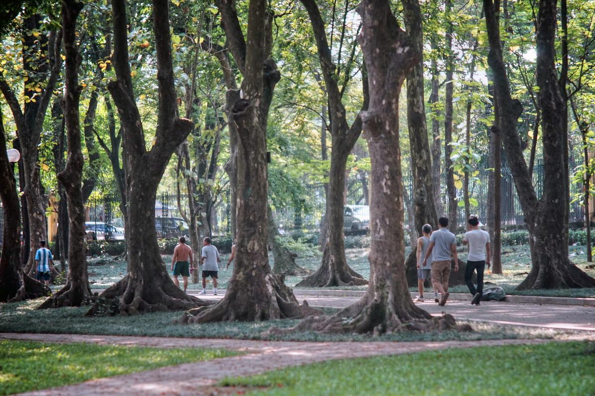 Chùm ảnh: Khám phá Vườn Bách Thảo – công viên lâu đời nhất Hà Nội