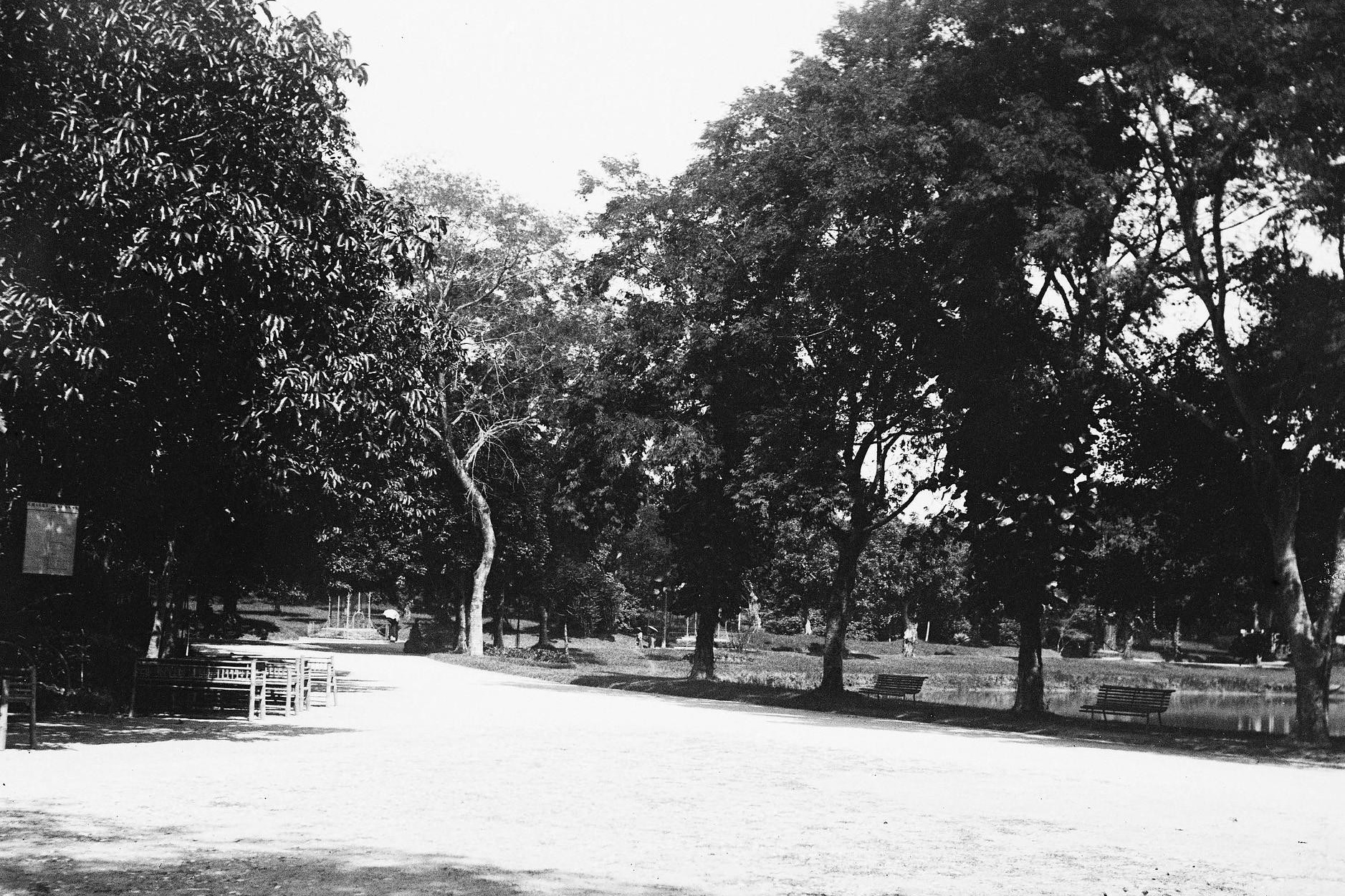Ảnh hiếm về vườn Bách thảo Hà Nội thuở sơ khai