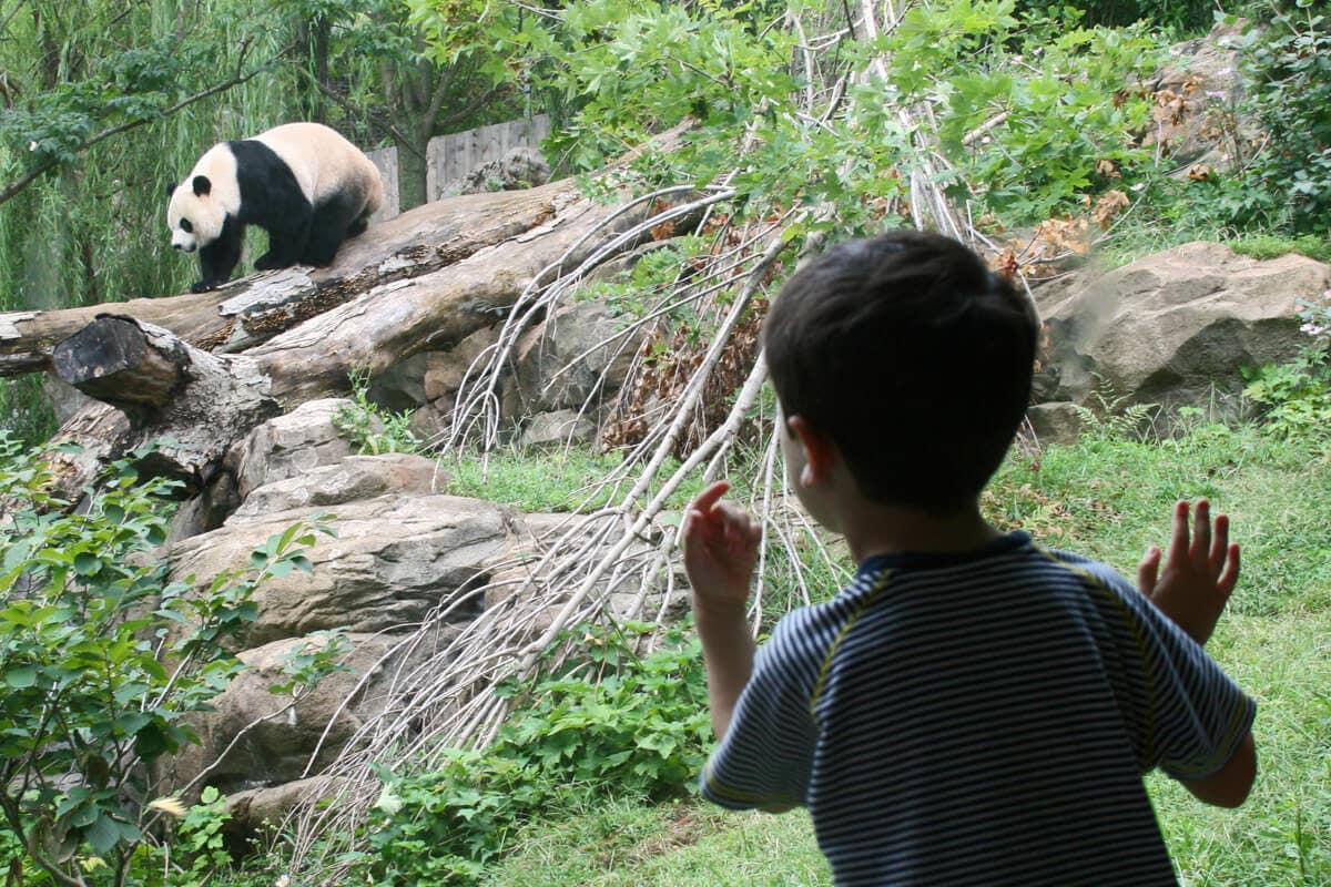 Tổng quan về mối quan hệ giữa con người với môi trường