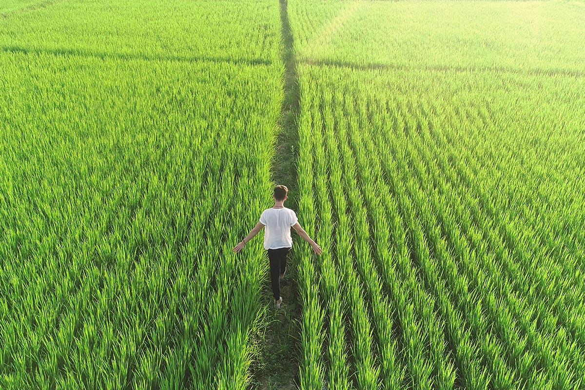 Văn hóa tiểu nông và thói khôn lỏi của người Việt