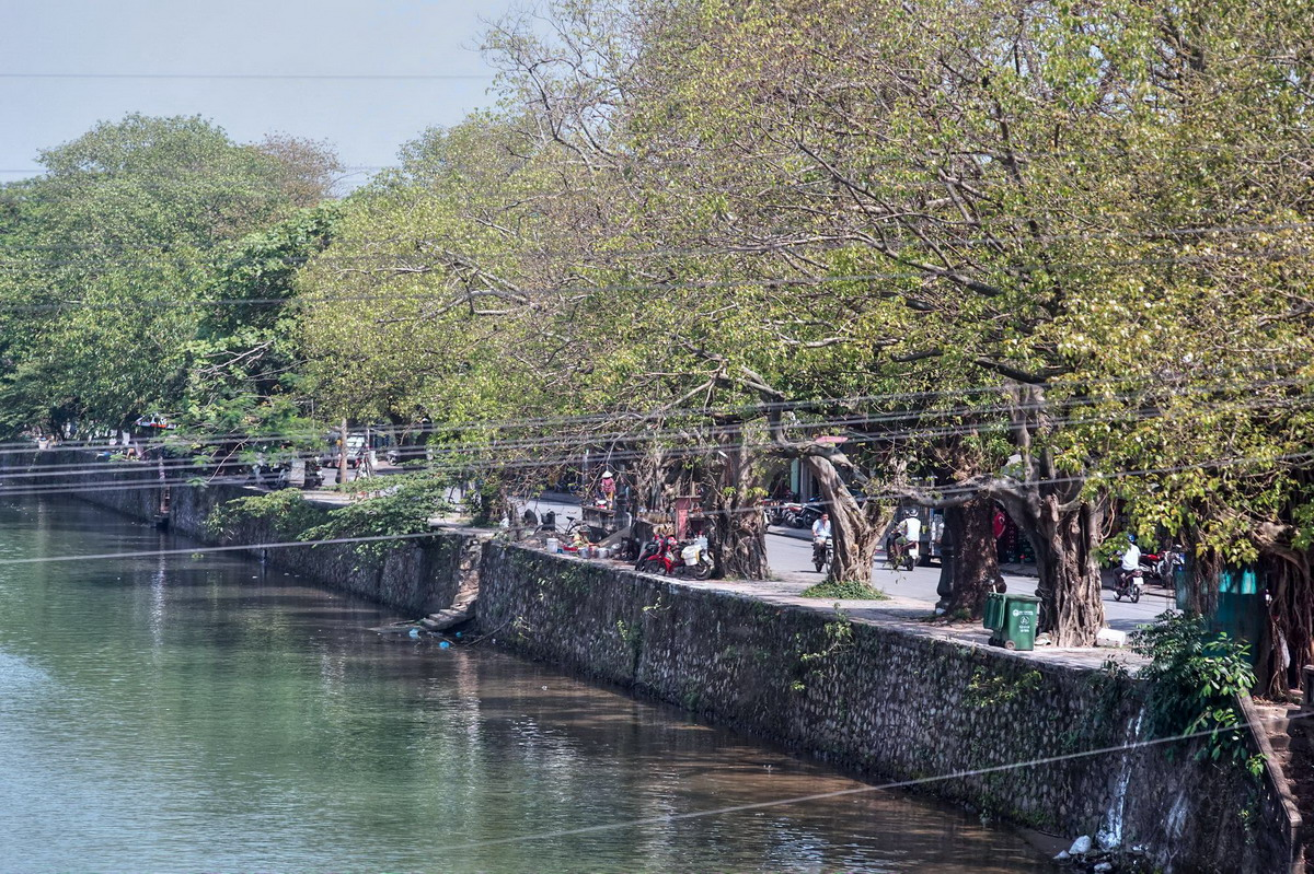 Chùm ảnh: Tuyến đường cổ thụ tuyệt đẹp của Cố đô Huế