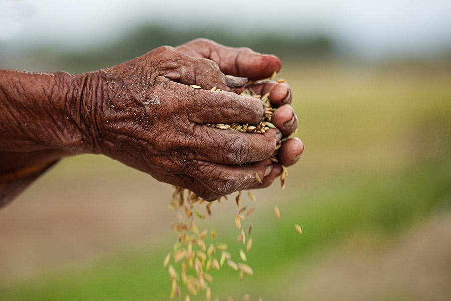 Những lý luận chung về đói nghèo và xoá đói giảm nghèo