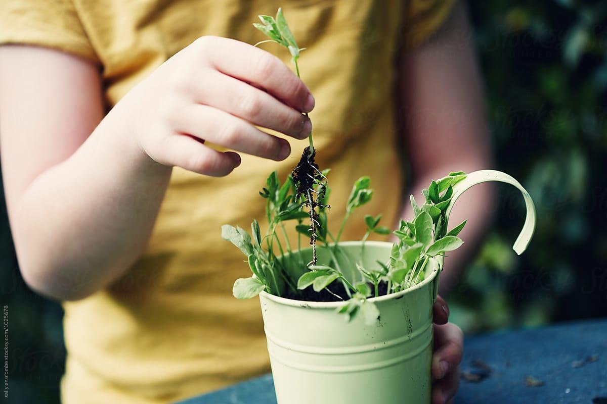 5 bài học về bảo vệ môi trường cần dạy cho trẻ