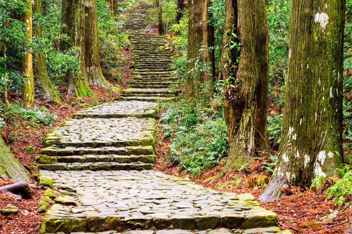 Quản lý môi trường ở Mỹ và Nhật Bản: Bài học kinh nghiệm cho Việt Nam