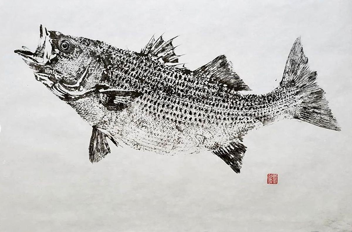 Tranh gyotaku Nhật Bản: Nguồn dữ liệu lịch sử về đa dạng sinh học