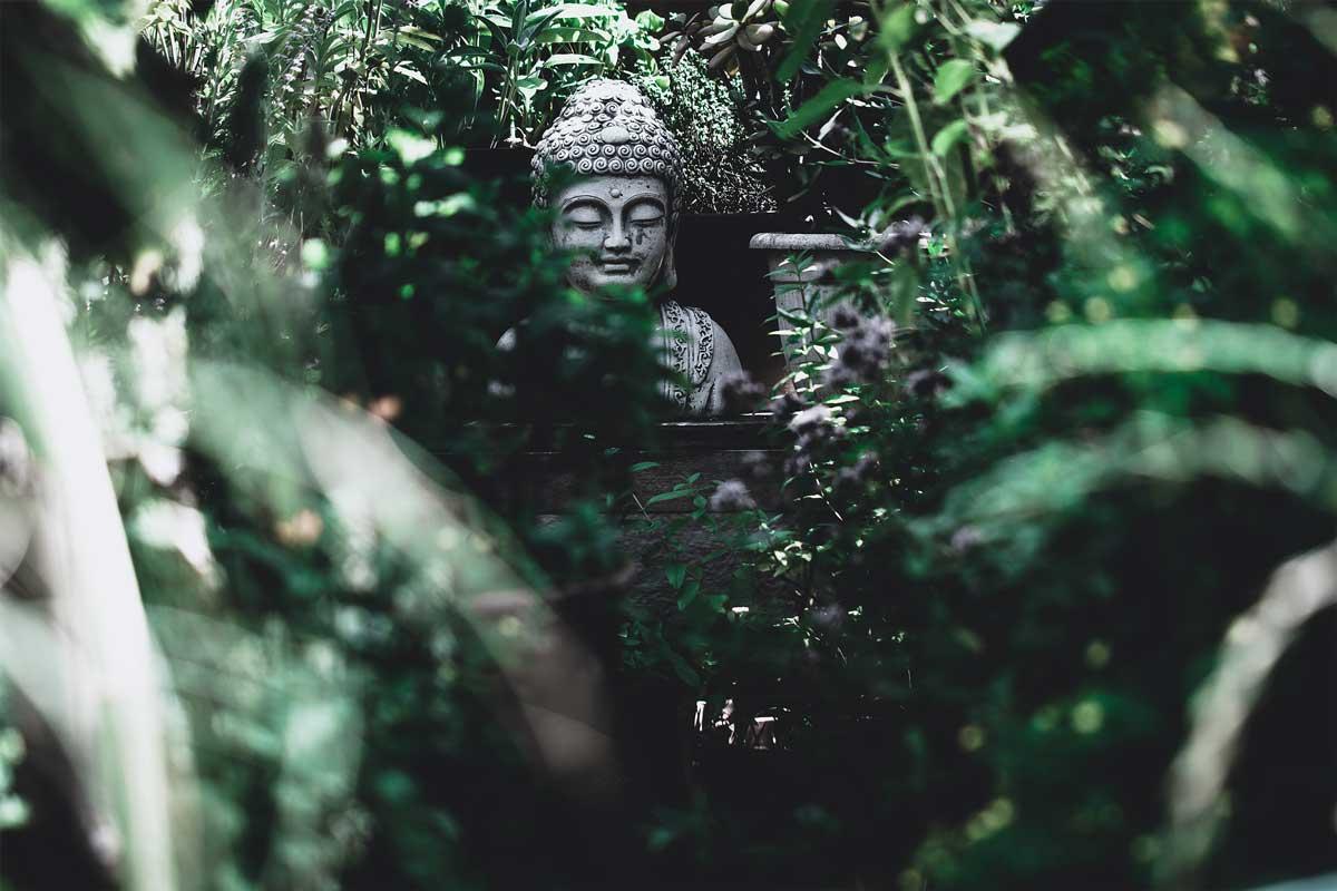 Đức Phật A Di Đà qua lăng kính vật lý lượng tử