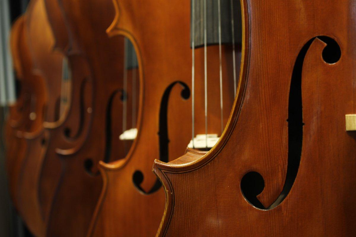 Âm nhạc có mối liên hệ như thế nào với trí não con người?