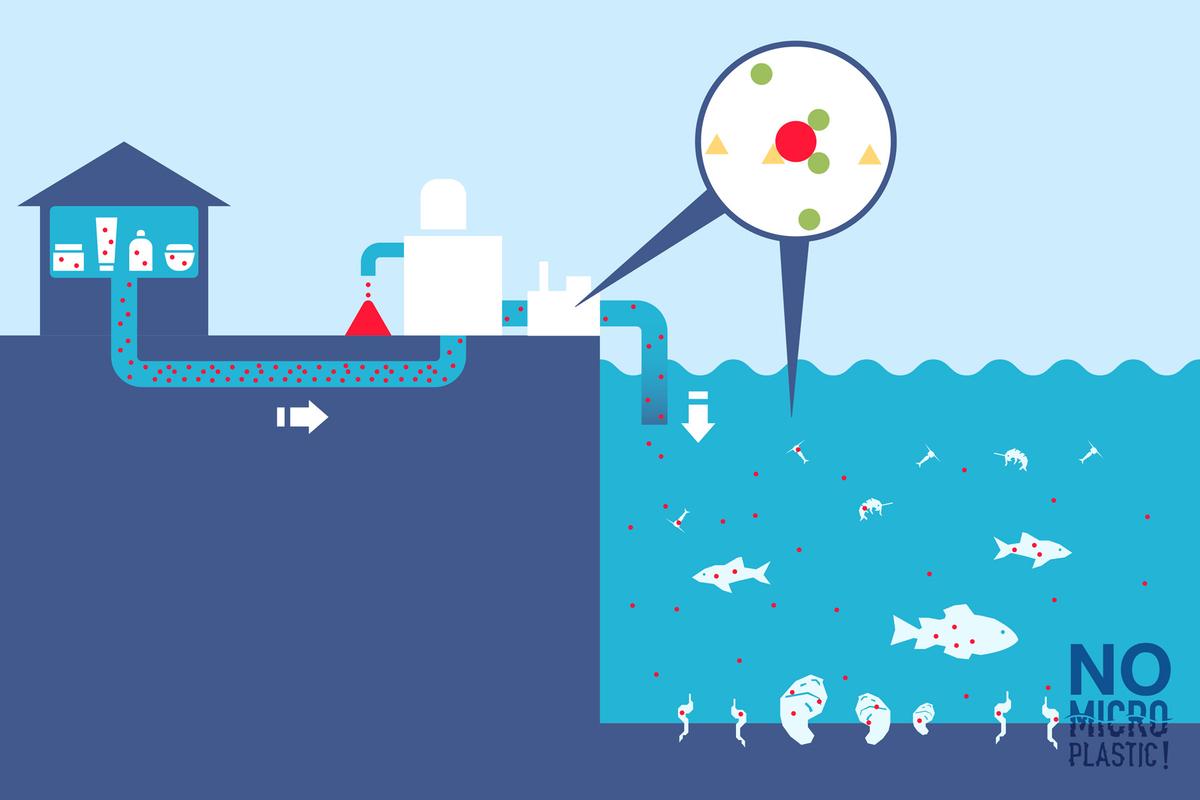 Ô nhiêm vi nhựa: Những tác động tới môi trường và sức khỏe con người