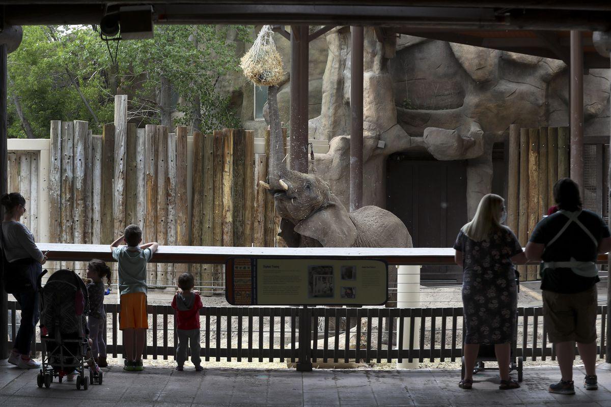 Một cái nhìn về vườn thú
