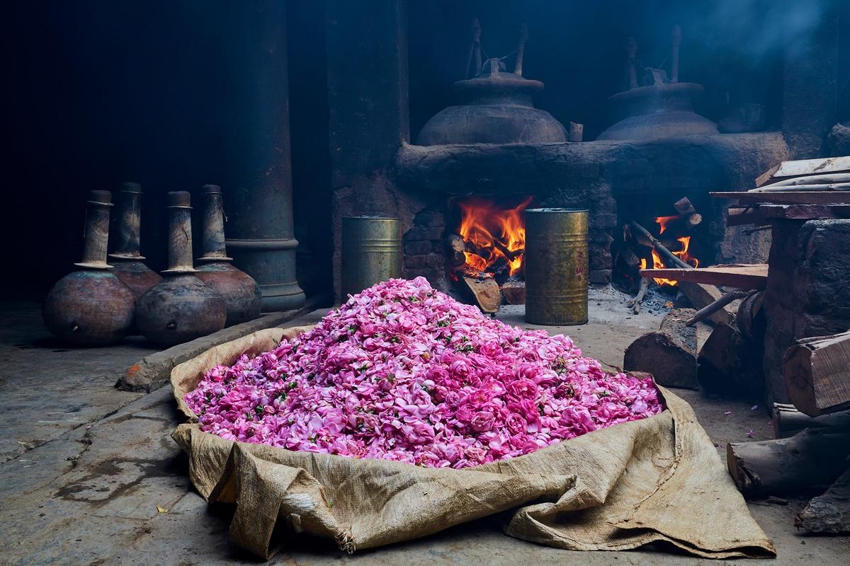 Chùm ảnh: Bên trong thủ phủ sản xuất nước hoa của Ấn Độ