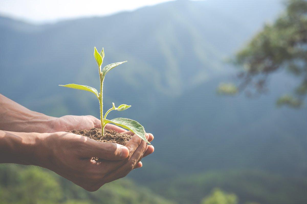 Agroecology – chìa khóa cho sản xuất nông nghiệp ứng phó với biến đổi khí hậu