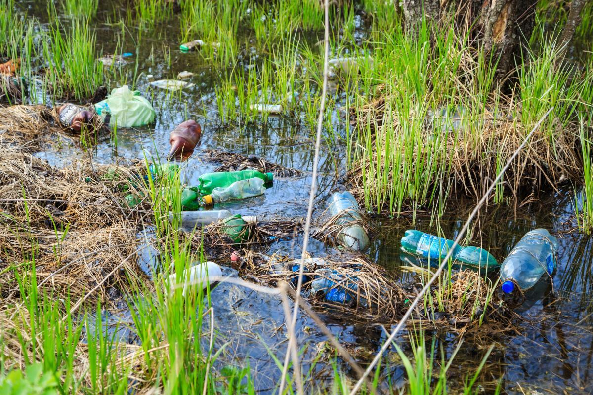 Nhựa phân hủy sinh học và tiềm năng phát triển ở Việt Nam