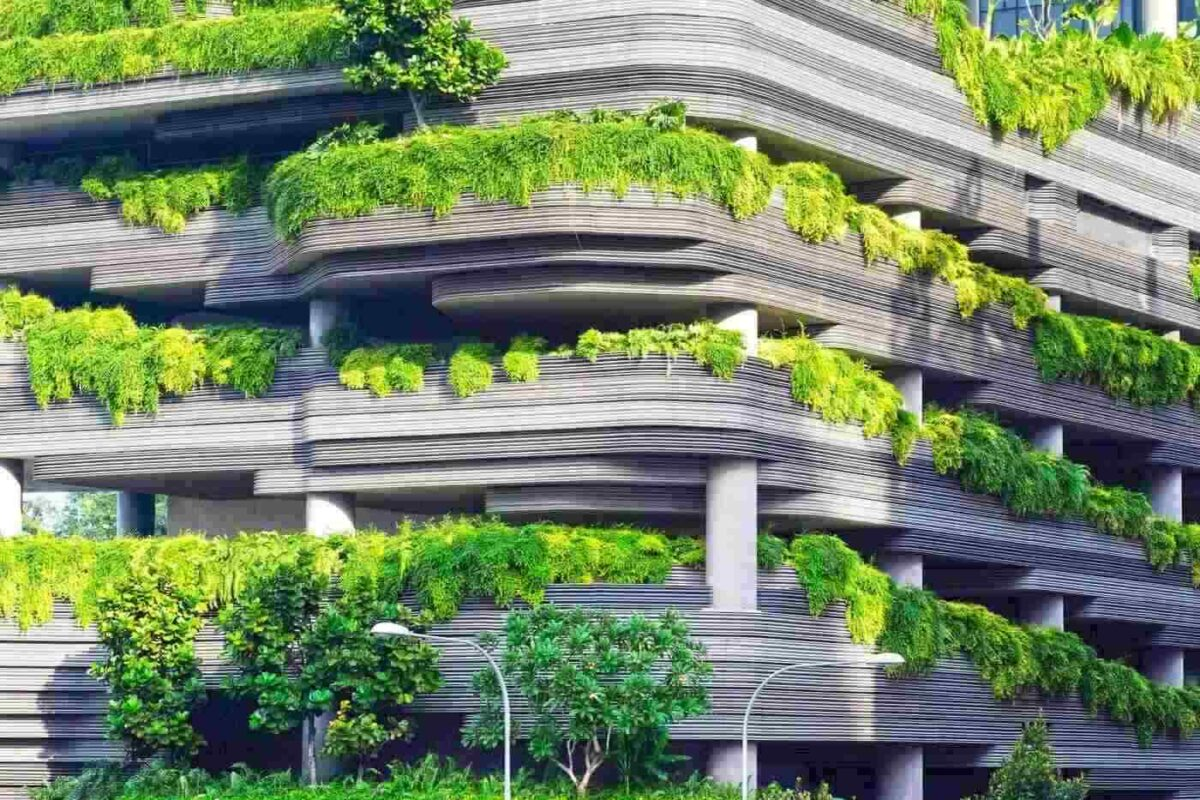 Tìm lối sống 'xanh' trong không gian đô thị nhiều biến đổi