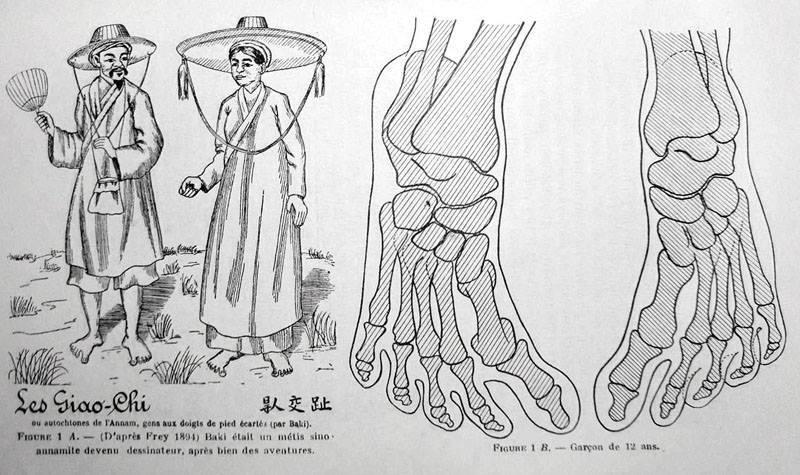 Bàn chân Giao Chỉ của người Việt: Huyền thoại và sự thật