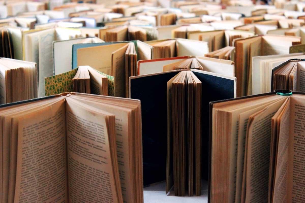 Văn học và khả năng nhân đạo hóa con người