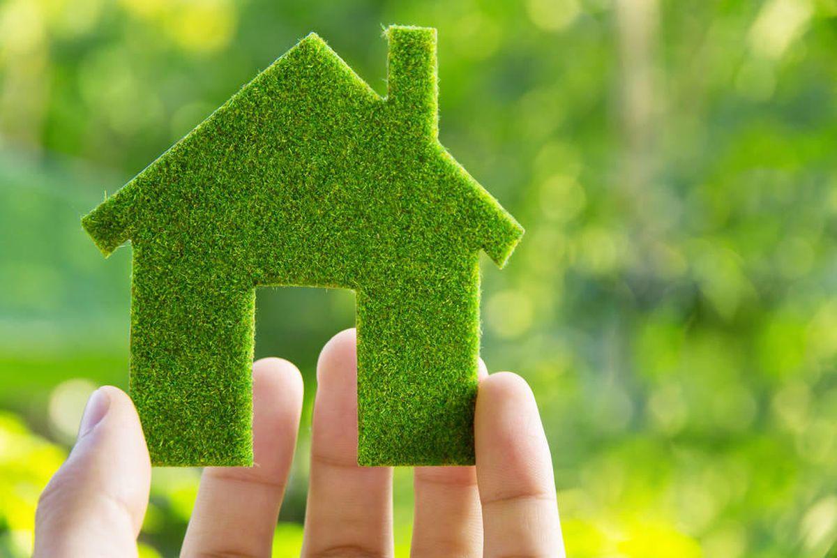 Thực hành sống xanh bảo vệ môi trường là lựa chọn của người có lương tri